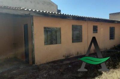 Cornélio Procópio - Casa - Térrea 01 quarto para alugar -